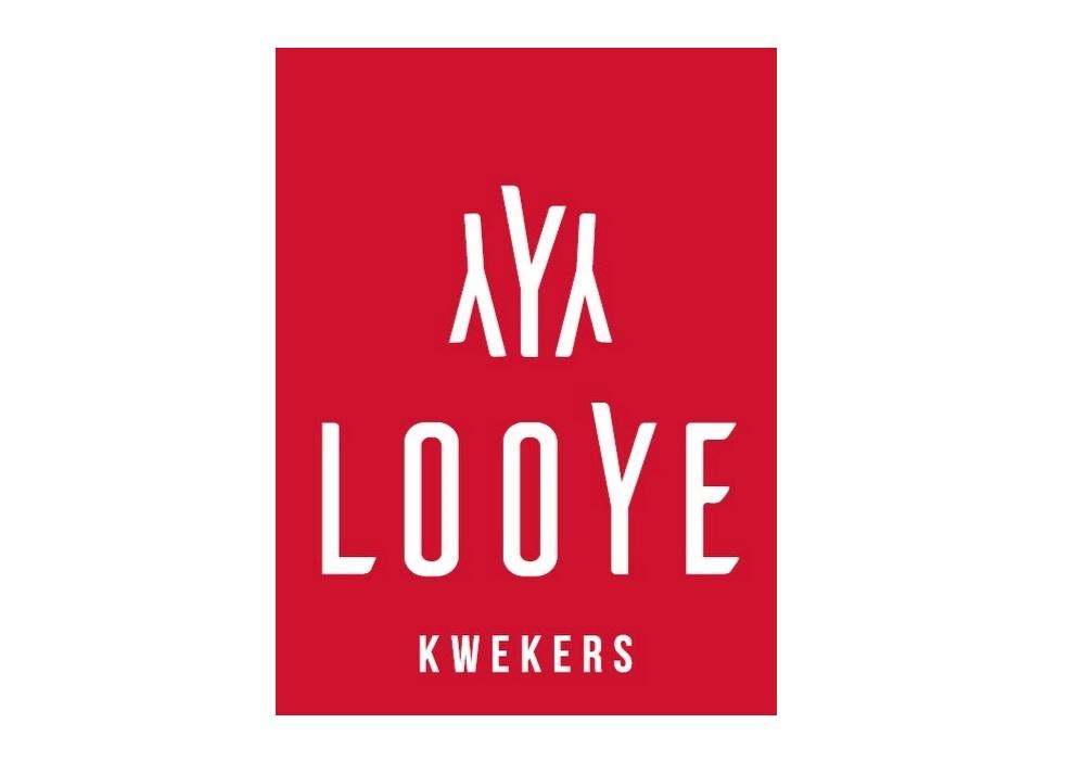 Looye CENTER